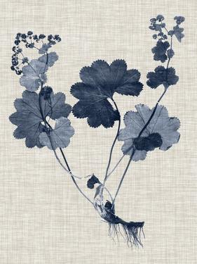 Navy & Linen Leaves IV by Vision Studio