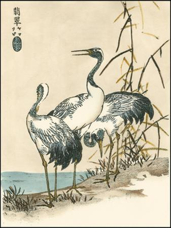 Oriental Crane II by Vision Studio
