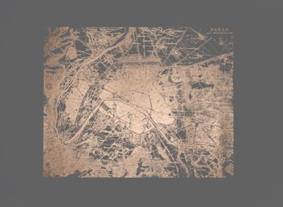 Rose Gold Foil Maps I on Dark Grey by Vision Studio