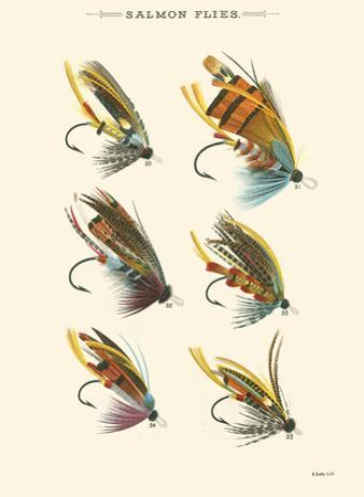 Salmon Flies II by Vision Studio