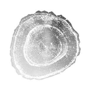 Silver Foil Tree Ring III by Vision Studio
