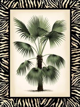 Small Palm in Zebra Border II by Vision Studio