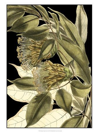 Tranquil Tropical Leaves VI by Vision Studio
