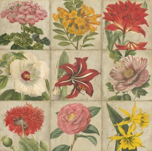 Vintage Flower Grid by Vision Studio