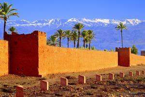 Town of Marrakech by Visions Of Our Land