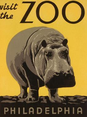 Visit the Philadelphia Zoo
