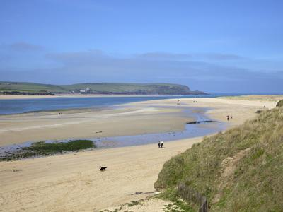 https://imgc.allpostersimages.com/img/posters/visitors-and-tourists-walking-dogs-on-beach-at-camel-estuary-near-rock-north-cornwall-england-uk_u-L-PFNBWV0.jpg?artPerspective=n