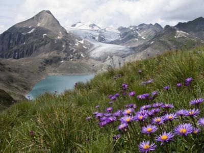 Corno Gries, Switzerland by Vito Guarino