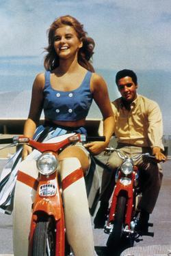 Viva Las Vegas by George Sidney with Ann Margaret and Elvis Presley, 1964