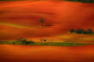 Red Land by Viviane Fedieu Daniel
