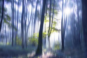 Solitude Bleue by Viviane Fedieu Daniel