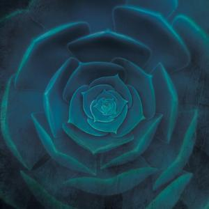 blue heart by Viviane Fedieu Danielle