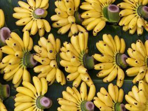 Bananas Sold at Damnoen Saduak Floating Market by Viviane Ponti