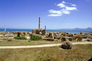 Antonine Baths, Carthage, Tunisia by Vivienne Sharp