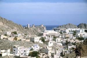 Muscat, Oman by Vivienne Sharp