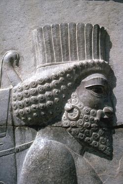 Relief of a Persian man, the Apadana, Persepolis, Iran by Vivienne Sharp