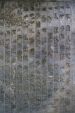 Relief of cuneiform text, the Apadana, Persepolis, Iran by Vivienne Sharp