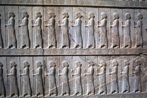 Relief of Immortals, the Apadana, Persepolis, Iran by Vivienne Sharp