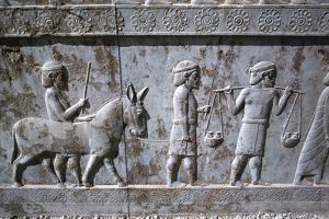 Relief of Indians, the Apadana, Persepolis, Iran by Vivienne Sharp