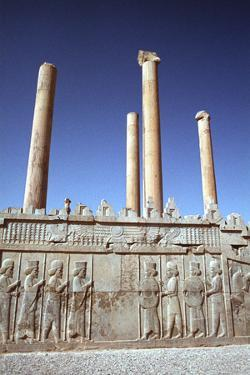 Relief of Medes and Persians, the Apadana, Persepolis, Iran by Vivienne Sharp