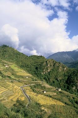 Road from Puntsholing to Paro, Bhutan by Vivienne Sharp