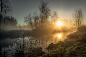 New Day Pitt Meadow by Vladimir Kostka