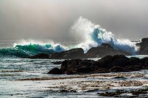 The Wave, Long Beach by Vladimir Kostka