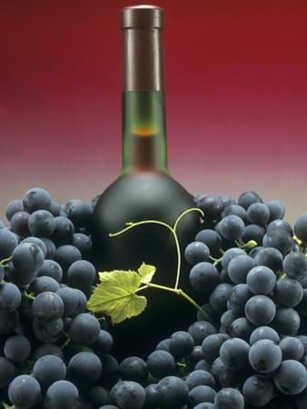 A Bottle of Red Wine with Black Grapes