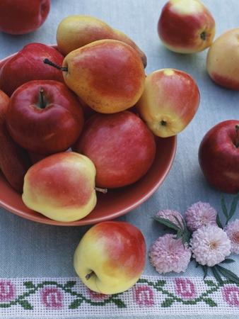 Apples and Pears in Fruit Bowl