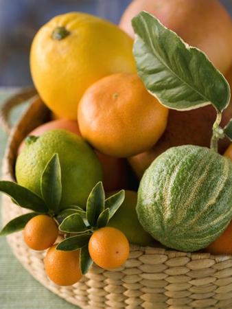 Basket of Assorted Citrus Fruit