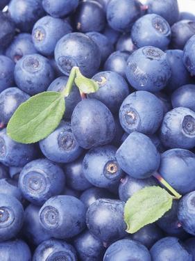 Blueberries by Vladimir Shulevsky