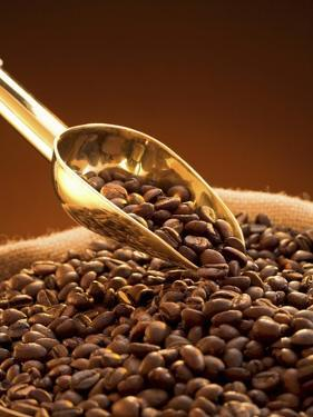 Coffee Beans in Sack and in Golden Scoop by Vladimir Shulevsky