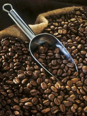 Coffee Beans with Metal Scoop in Sack by Vladimir Shulevsky