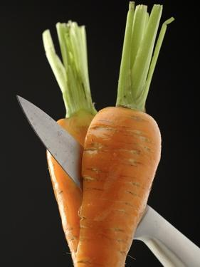 Cutting a Carrot in Half with a Knife by Vladimir Shulevsky