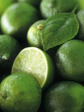 Limes, Several Whole and One Halved by Vladimir Shulevsky