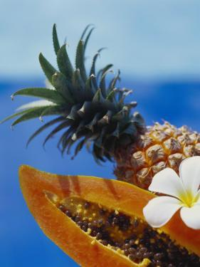 Papaya and Pineapple by Vladimir Shulevsky