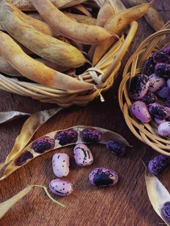 Purple Beans and Pods in Small Baskets