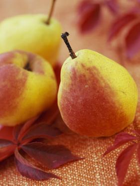 Three Pears by Vladimir Shulevsky