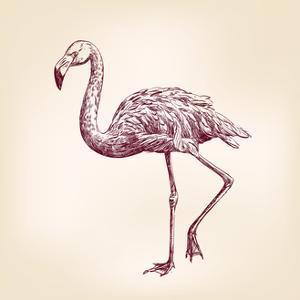 Flamingo Hand Drawn by VladisChern