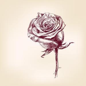 Hand Drawn Roses by VladisChern