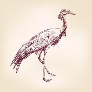 Japanese Crane Hand Drawn Vector Llustration Realistic Sketch by VladisChern