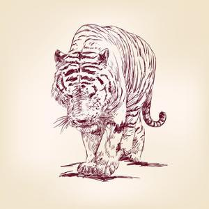 Tiger Hand Drawn by VladisChern