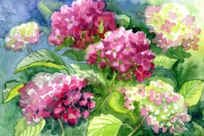 Drawing Blossoming Hydrangeas . Paper, Water Color