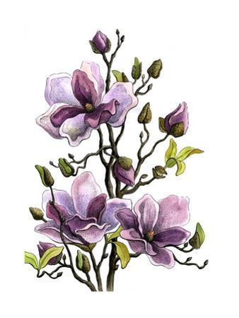 Drawing Branch of a Blossoming Magnolia . Paper, Water Color, H by vodolej