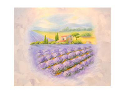 Fields of the Blossoming Lavender in Provence. A List on a Room by vodolej
