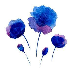 Watercolor Poppies on the White Background. by Vodoleyka