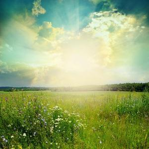 Green Meadow Under Blue Sky With Clouds by Volokhatiuk