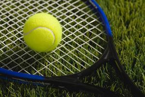 Usa, Illinois, Metamora, Tennis Racket and Ball on Grass by Vstock LLC