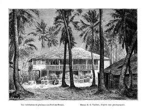 Tropical Building, Port-Au-Prince, Haiti, 19th Century by Vuillier