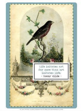 The Pet Bird, c. late 1800's by W.E. Tucker
